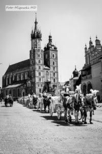 Fotografia - miasto